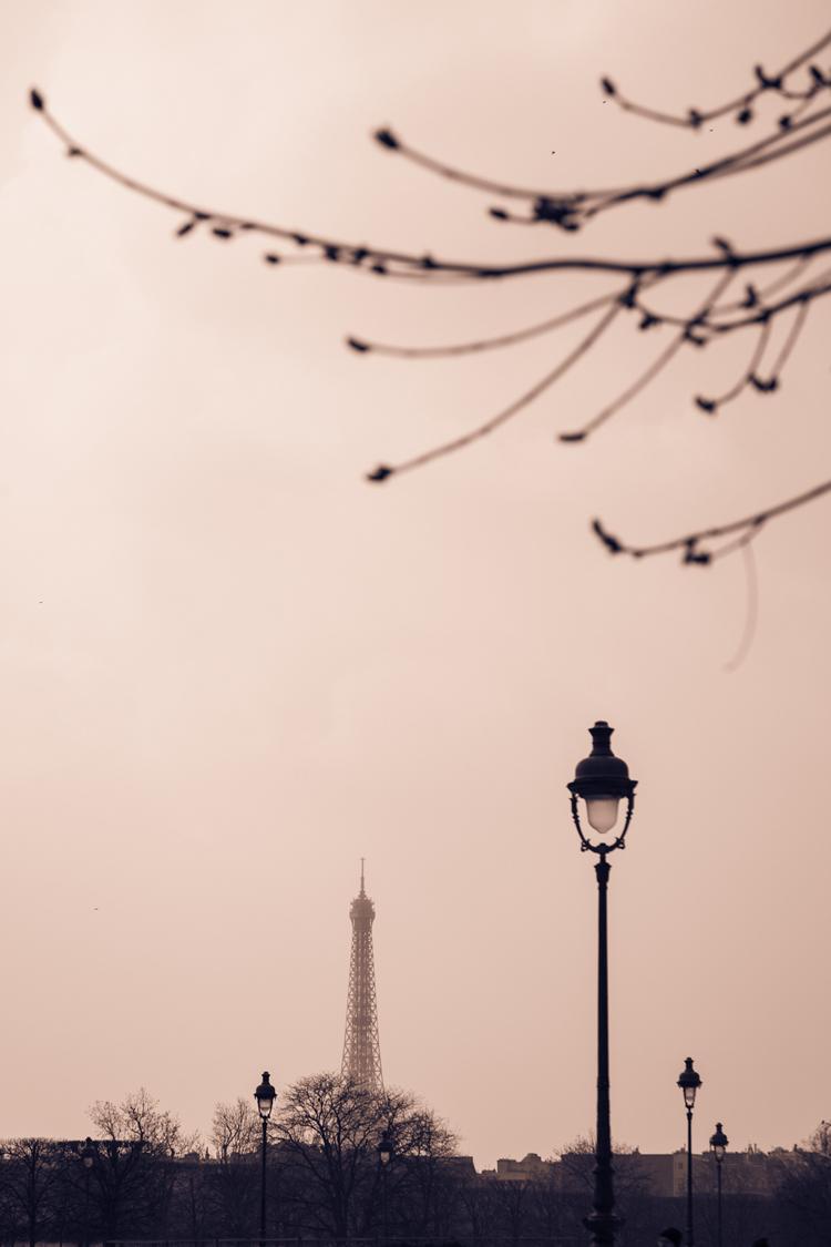La vie en rose • Tour Eiffel