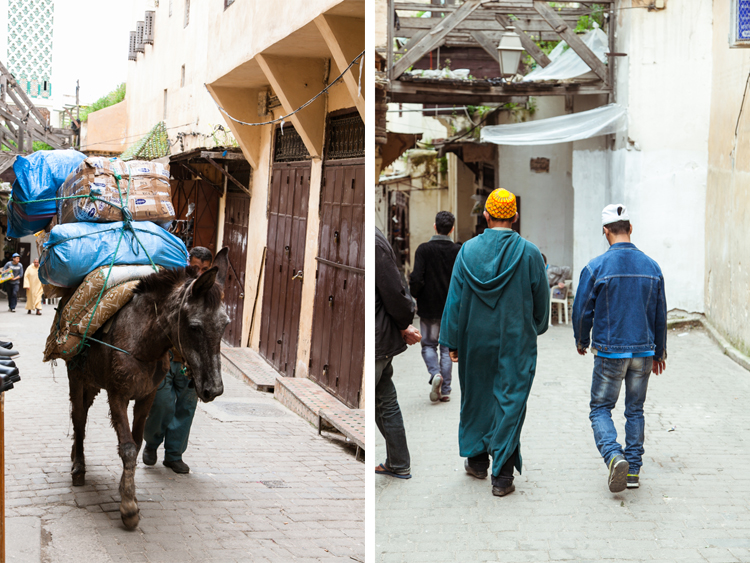 Donkey as cargo transport in car-free Fes el Bali / Moroccan men in traditional and modern garb