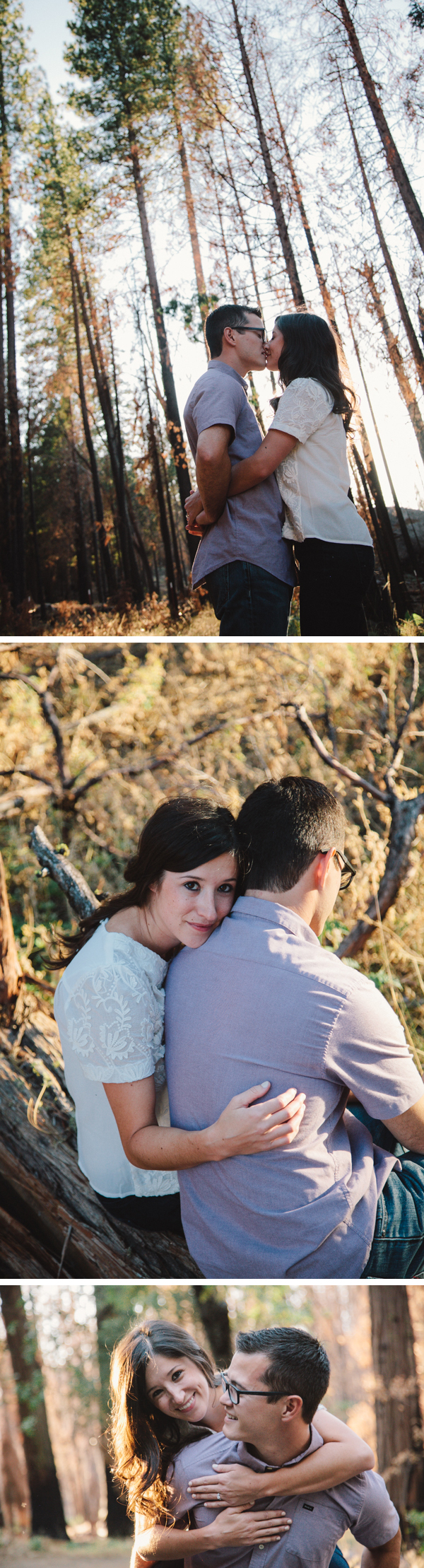 Engagement photography in the woods • Yosemite, California