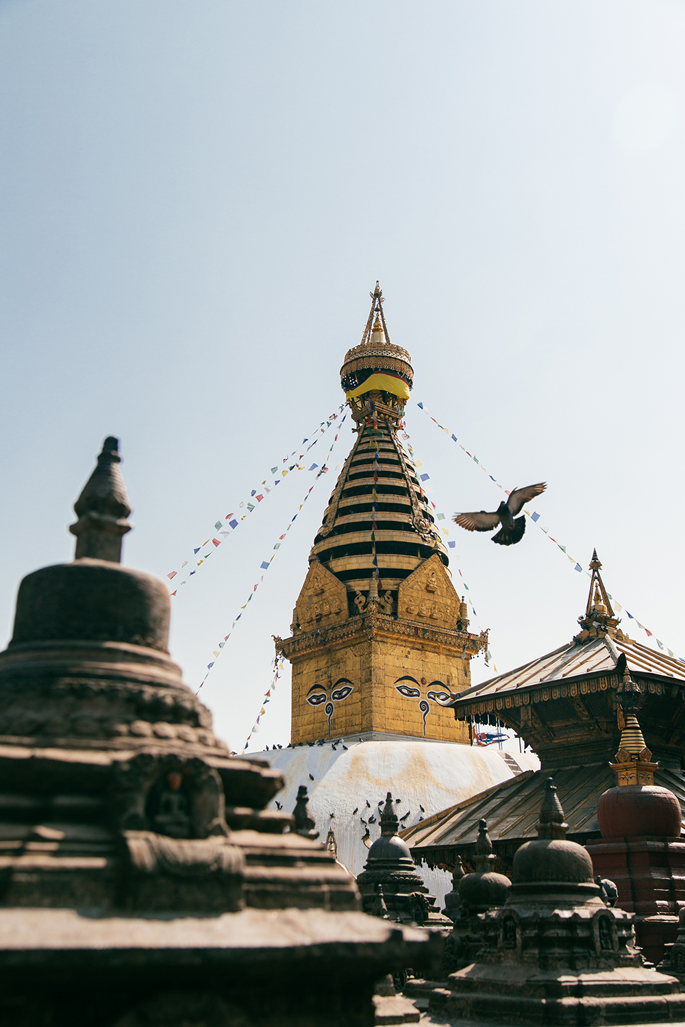 Swayambhunath | Monkey Temple Kathmandu by Tracy Wong